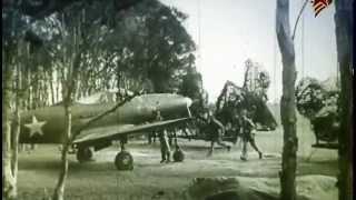 Истребители Второй Мировой войны (2013) (Серии: 2 из 4)