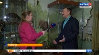 В Новосибирской области нашли следы вымершего шерстистого носорога