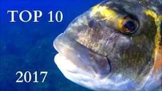 Pescasub: Top 10 -  Il meglio del 2017