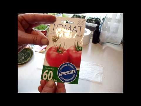 Вопрос: Какие существуют способы быстрого проращивания семян помидор?
