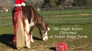The Night Before Christmas at Jasper Ridge Farm