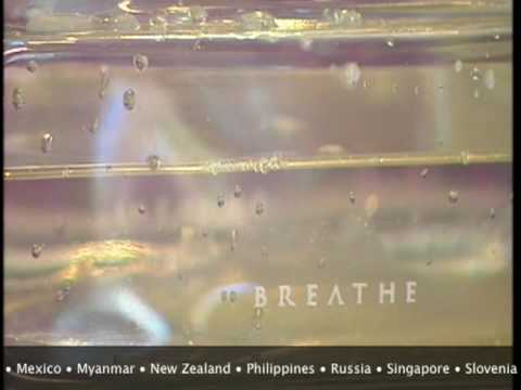 BREATHE Air Revitalizer