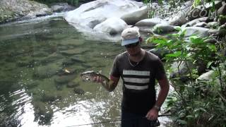 Fishing for Borneo Mahseer