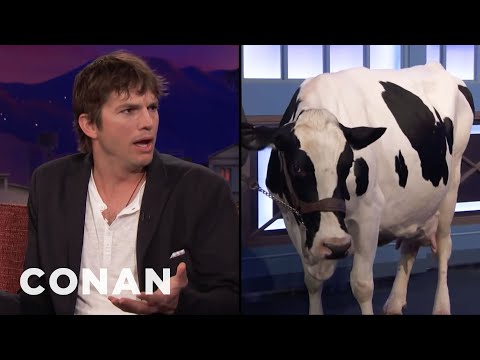 Netflix Won't Let Ashton Kutcher Give Away This Cow   CONAN on TBS
