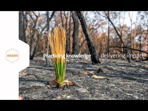 Enzen's Presentation by Ian McLeod