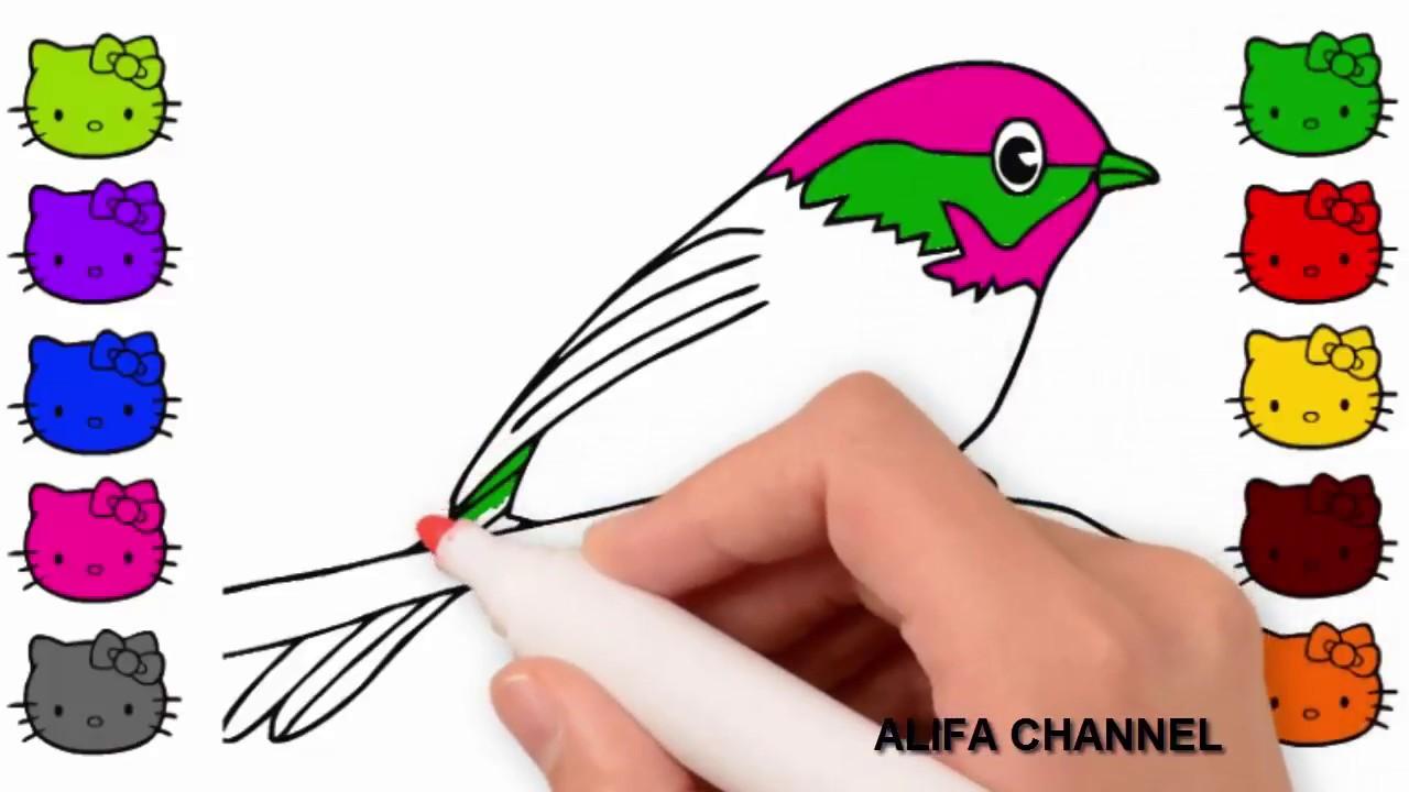 Burung Cara Menggambar Dan Mewarnai Burung Untuk Anak Anak Youtube