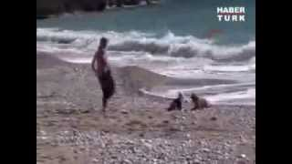 Cocker Spaniel Saves Baby From Crawling Into The Sea In Turkey