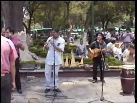 MUSICA DE LOS ANDES EN MEXICO EL PANORAMA
