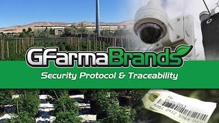 Washington G FarmaBrands Legal Marijuana Farms (Full Video)