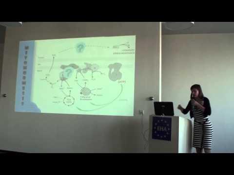 Eurosymposium on Healthy Ageing 2014. Liesbet Temmerman.