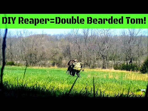 Turkey Hunt with Reaper: Double Bearded Tom Down in Kansas!!!
