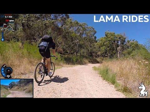 LAMA RIDES: Eagle