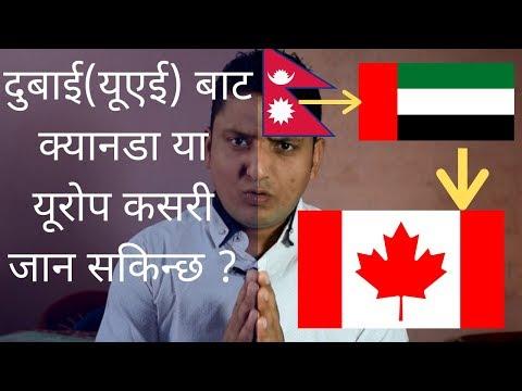 Work In Canada, Dubai To Canada Process कसरी जान सकिन्छ