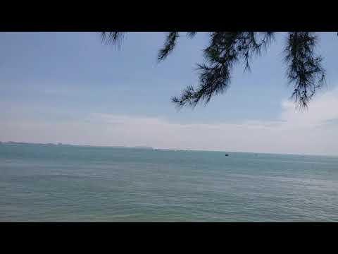 Damai di Port Dickson