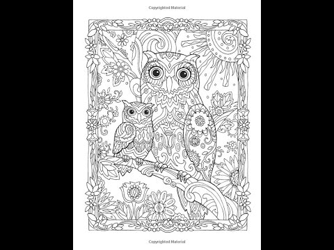 Owl A Baby Owl сова мама и совенок раскраска антистресс