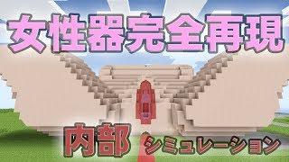【マインクラフト】女性器内部シミュレーション【医学・芸術】 thumbnail