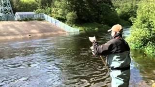Salmon Fishing Ireland 2014.