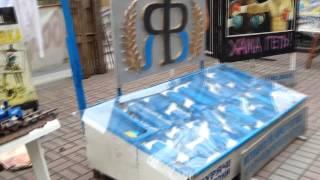 Выставка инсталяций в поддержку Тимошенко  2011 -  2014 год