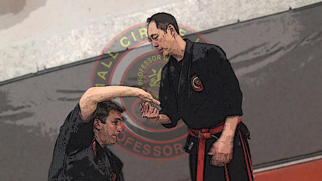 Bildergebnis für Leon Jay Small circle jiu jitsu