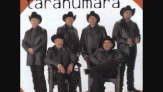 Conjunto Tarahumara- Gaviota Traidora