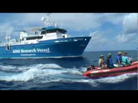 Western Australia's Ocean Environment - A Voyage of Discovery (best quality)
