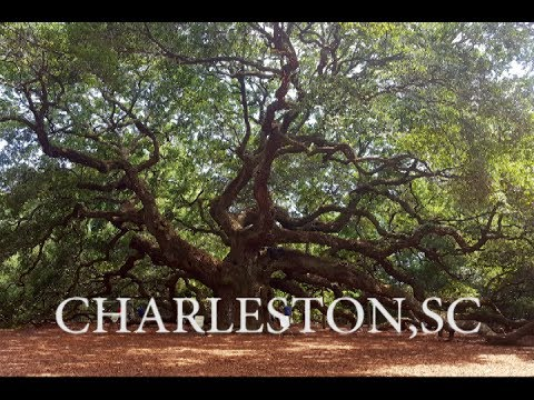 Visit Charleston, South Carolina!