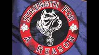 Download Strength For A  Reason - Show And Prove 2001 [FULL ALBUM] MP3 song and Music Video