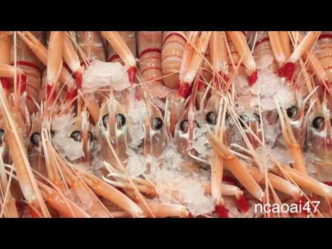 Sydney Fish Market - DIY - Fishing Tips -  Chợ Cá Sydney .
