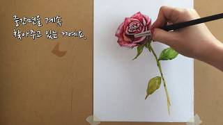 [수채화] 장미 그리기 / Watercolor pain…