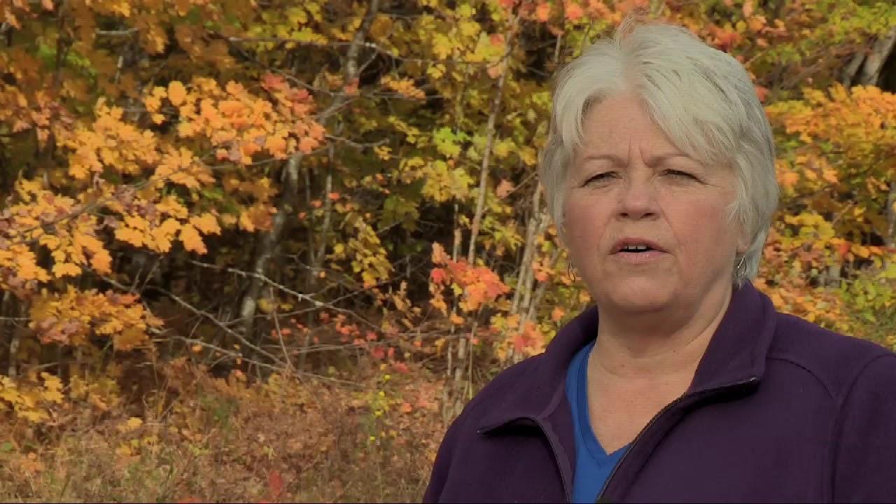 Munising Michigan -  Fall Colors