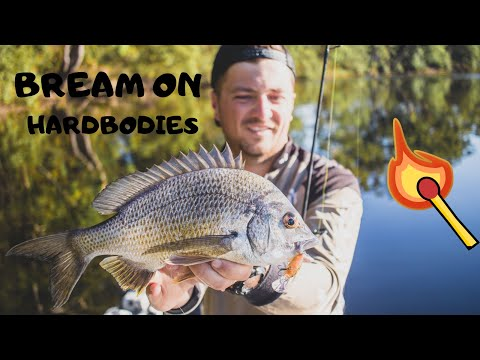 Forster Bream Fishing With Hardbodies