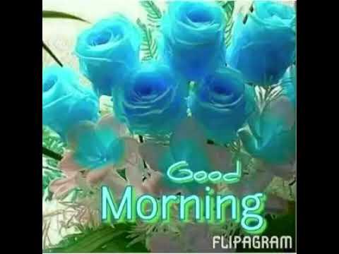 Nirankari good morning