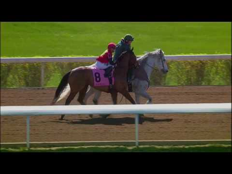 A.P. Indian, Whitmore Line Up in the Maryland Sprint Stakes