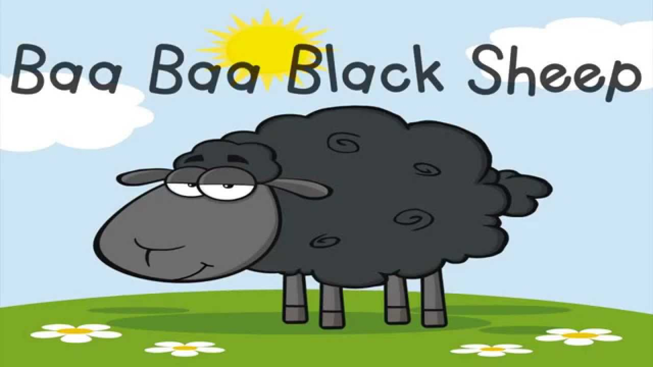 Black Sheep Video