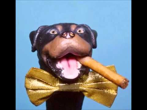 Image result for insult comic dog for me to poop on