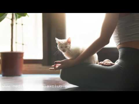 1 HOUR Bliss | Healing Nature Sounds for Zen Yoga Music Therapy