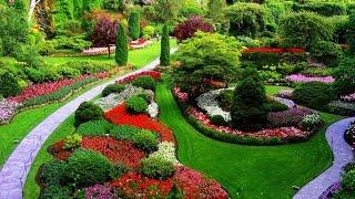 ¿Qué significa soñar con jardin? - Sueño Significado