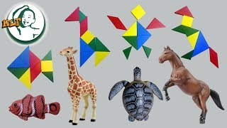 Learn to play Tangram Animal with Tomica animal