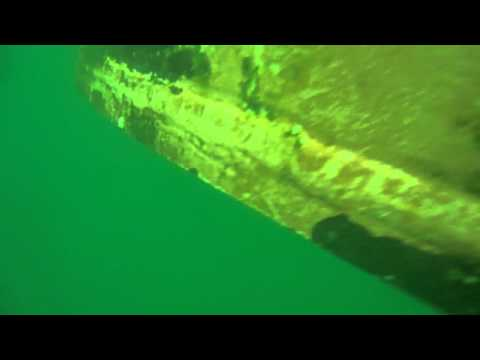 M/V Silver Phoenix - Underwater Cleaning at Santos Port
