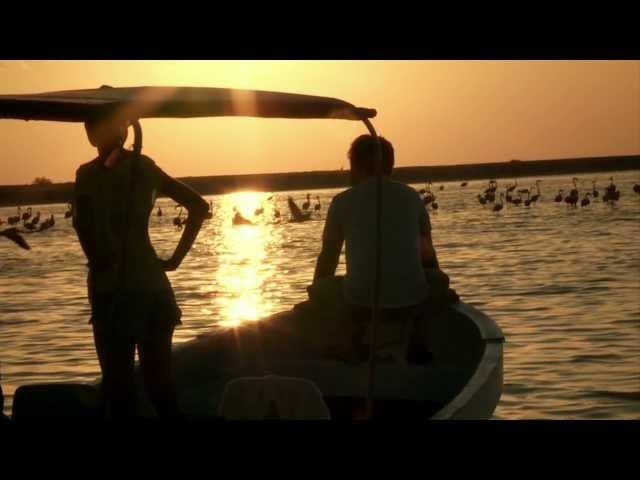 Yo descubrí Yucatán musicalizado por Natalia Lafourcade (Turismo México) Videos De Viajes