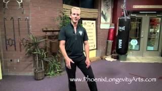 Iron Bone of Kung Fu, Training Video 9