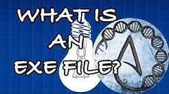 What is an EXE file?