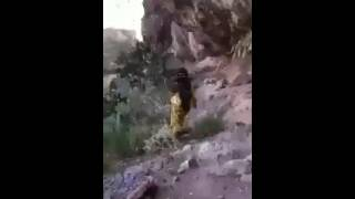 اقوى صوت قد تسمعه من اليمن