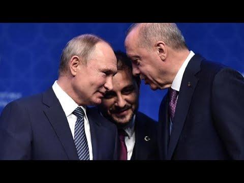 سوريا: أردوغان وبوتين يتباحثان -هاتفيا- حول إدلب وسط مخاوف دولية من -كارثة إنسانية-  - نشر قبل 8 ساعة