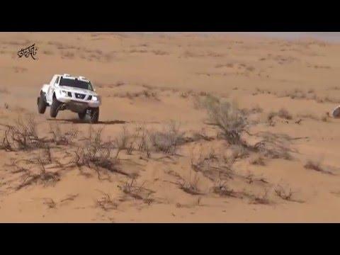 فديو يجمع اربع جولات لرالي حايل 2016