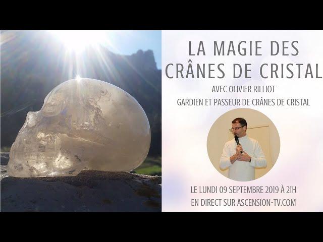 La magie des crânes de cristal avec Olivier Rilliot, gardien et passeur de crânes