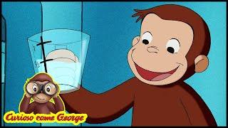 Curioso come George 🐵Un Ospite Molto Ordinato 🐵 Cartoni Animati per Bambini 🐵 Stagione 4