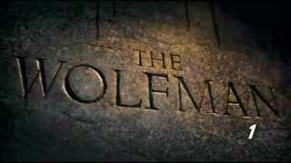 Todas las muertes de Wolfman (Kill Count)