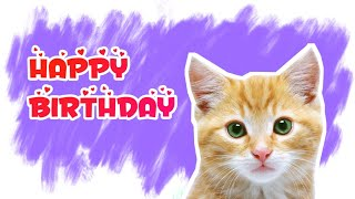 Kucing nyanyi Lagu Ulang tahun Happy Birthday