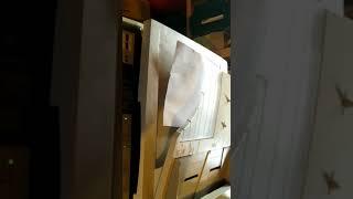Видео Шарпея